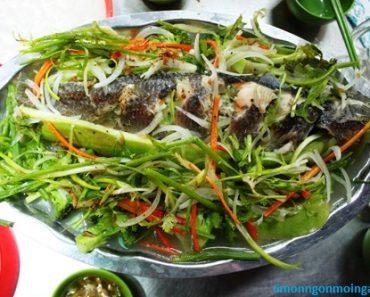 cách làm món cá lóc hấp bầu thơm ngon độc đáo