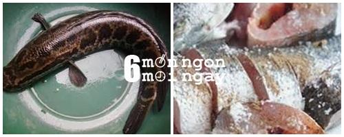 Cách làm cá quả kho riềng cực hao cơm ngày se lạnh - hình 2