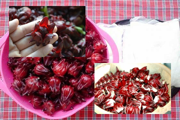 Cách làm mứt hoa atiso đỏ hình 2