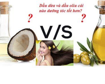 Dầu oliu hay dầu dừa tốt cho tóc hơn? Loại nào dưỡng đẹp hơn hình 1