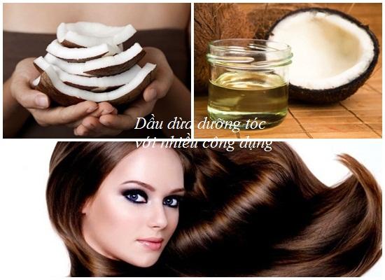 Dầu oliu hay dầu dừa tốt cho tóc hơn? Loại nào dưỡng đẹp hơn hình 2