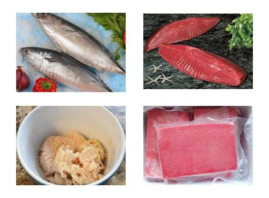 Hướng dẫn cách làm món chả cá ngừ vừa thơm vừa cay ngon hình 2