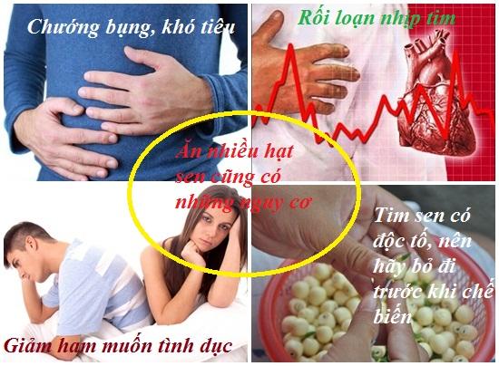 Ăn hạt sen nhiều có tốt không? Tác dụng và lợi ích của hạt sen hình 3