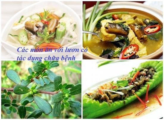 Ăn lươn nhiều có tốt không? Trẻ em ăn nhiều lươn có tốt không? hình 2
