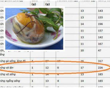 Ăn nhiều trứng vịt lộn có tốt không? Ăn sao cho đúng cách hình 1