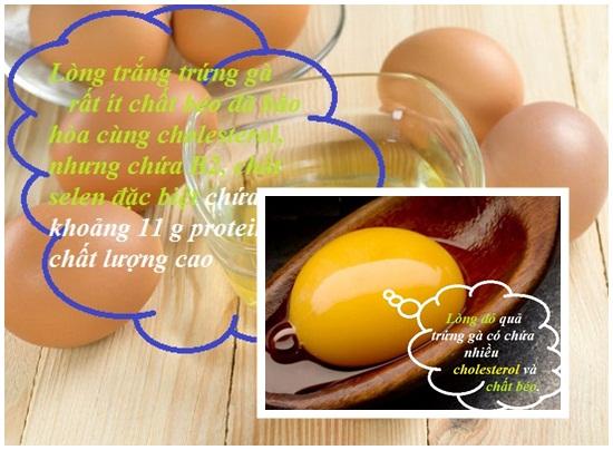 Ăn trứng gà nhiều có tốt không? Ăn trứng gà có béo không hình 2