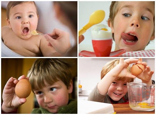 Trẻ em ăn trứng gà nhiều có tốt không? Ăn mấy quả 1 ngày hình 4
