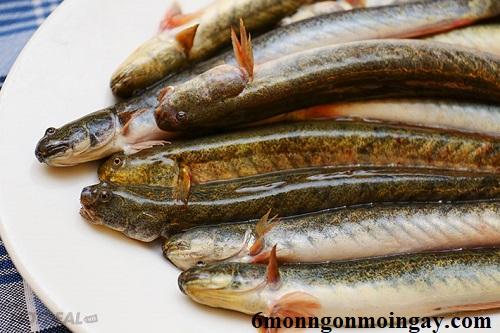 Cách làm sạch cá kèo sống đảm bảo không còn nhớt 3
