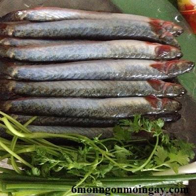 Khi chế biến món ăn cá kèo có cần mổ bụng không 2